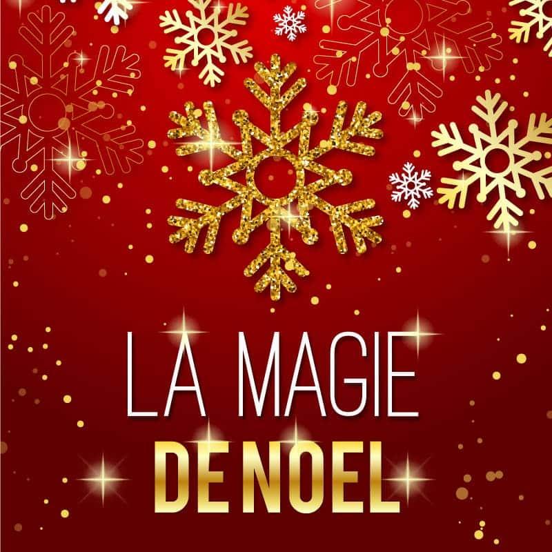 spectacle visuel la magie de Noël