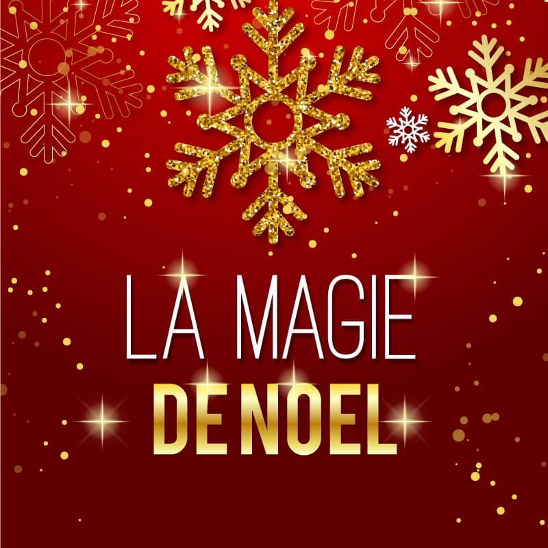 Spectacle de Noël | Cabaret Magie Danse Aérien