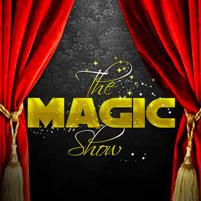 the magic show spectacles des arts visuels